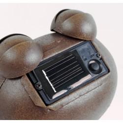 Décoration solaire Froggy 30cm